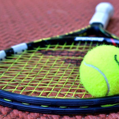 tennis-racket-tennis-ball-sport